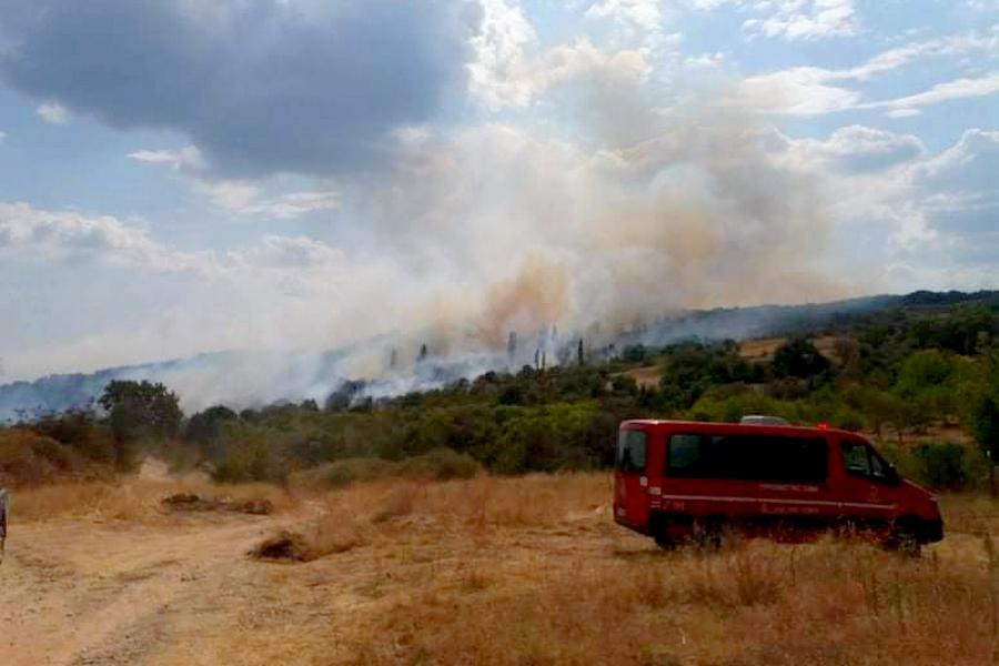 πυρκαγιά πυροσβεστικό σώμα πυροσβεστική δάσος